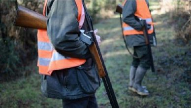 A-yellow-vest-for-walkers-during-the-hunting-season